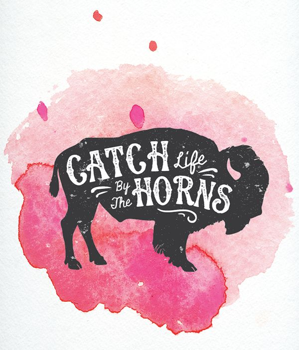 // Catch Life By The Horns